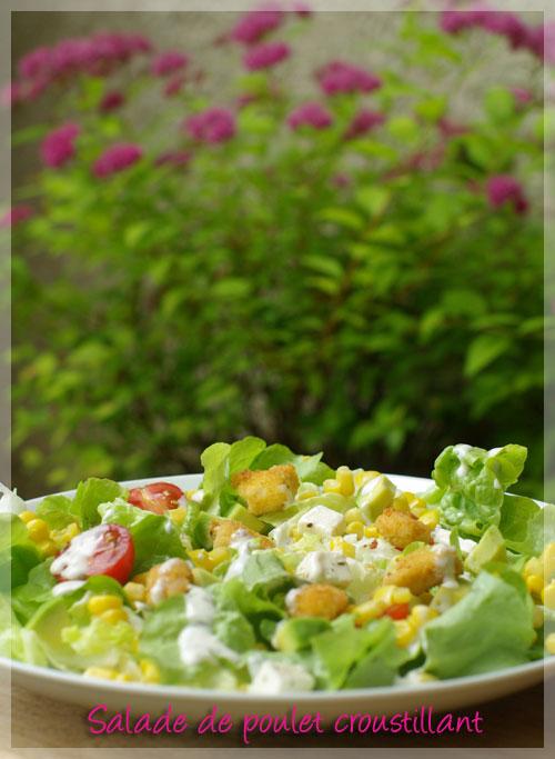 Recette Salade de Poulet