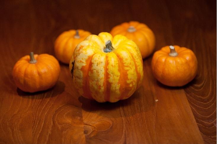 citrouille pumpkin halloween