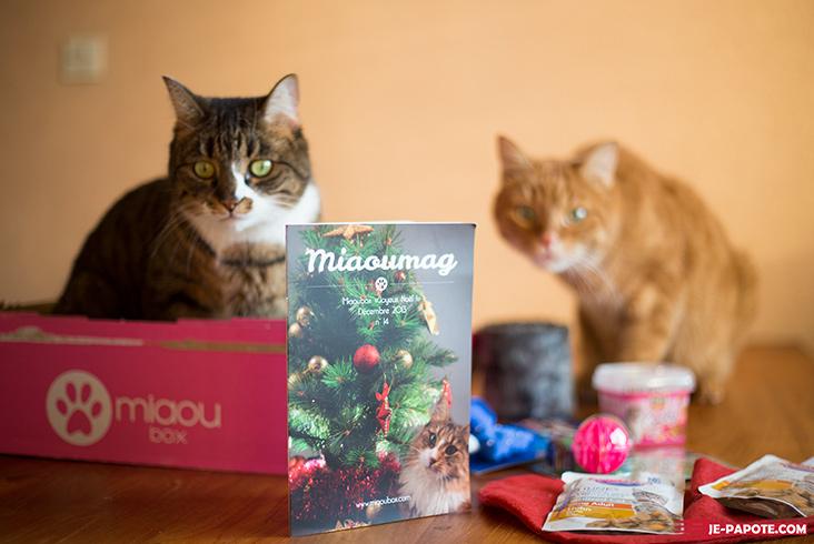 La miaoubox : même les chats ont leur box !