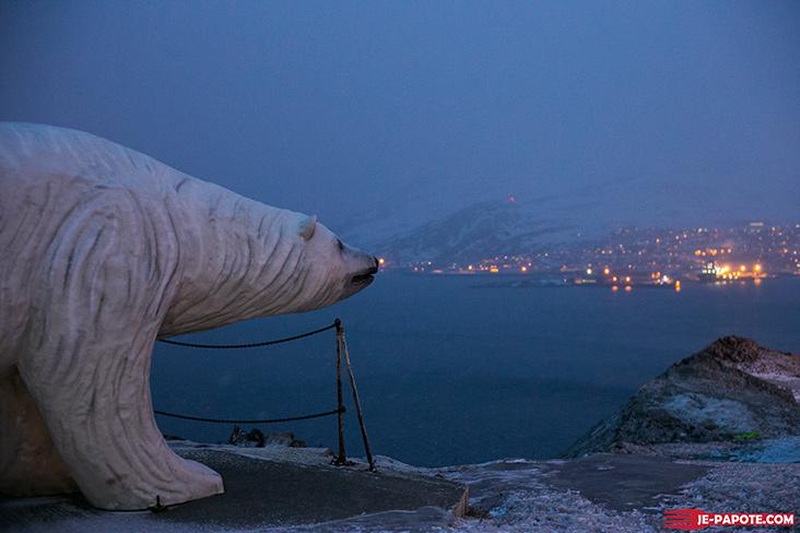 Ours Blanc Polaire Hammerfest