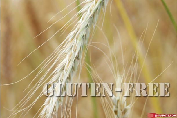 Manger sans gluten, Où trouve t'on du gluten ?