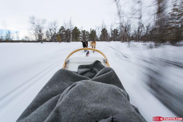 Voyage en Laponie : Chiens de traîneaux {Jour 11}