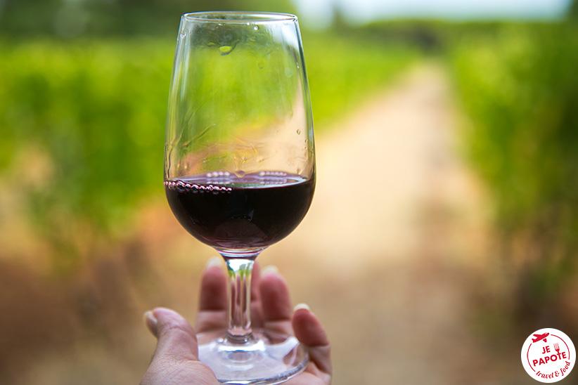Dégustation vin Ile Saint Honorat