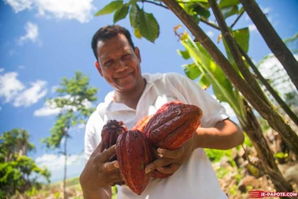 Bientôt du chocolat made in Mauritius ?