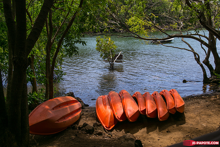otentic-eco-tent-activite-kayak