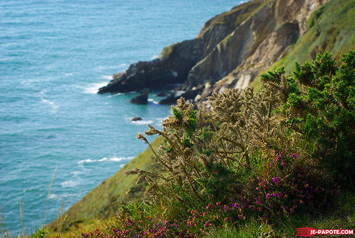 Falaise Howth Irlande