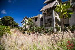 Quel hôtel pour un séjour 100% authentique ? Le Zilwa Attitude