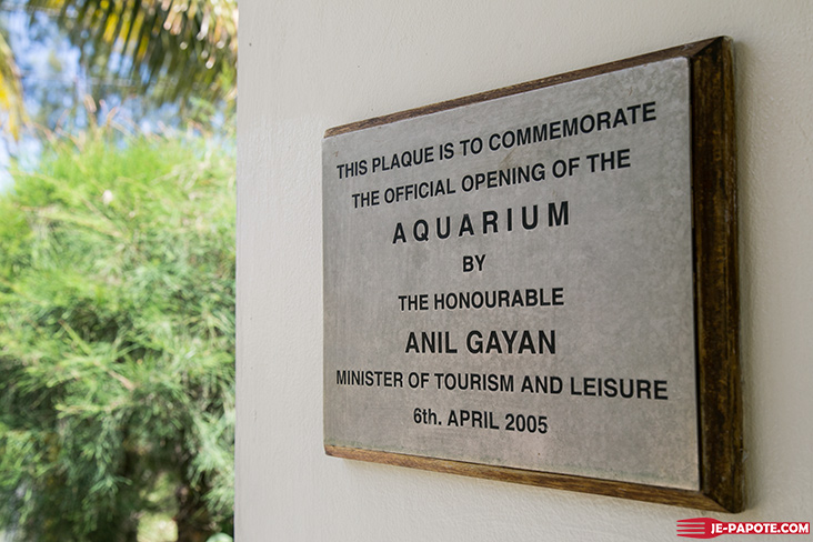 aquarium-pointe-piments
