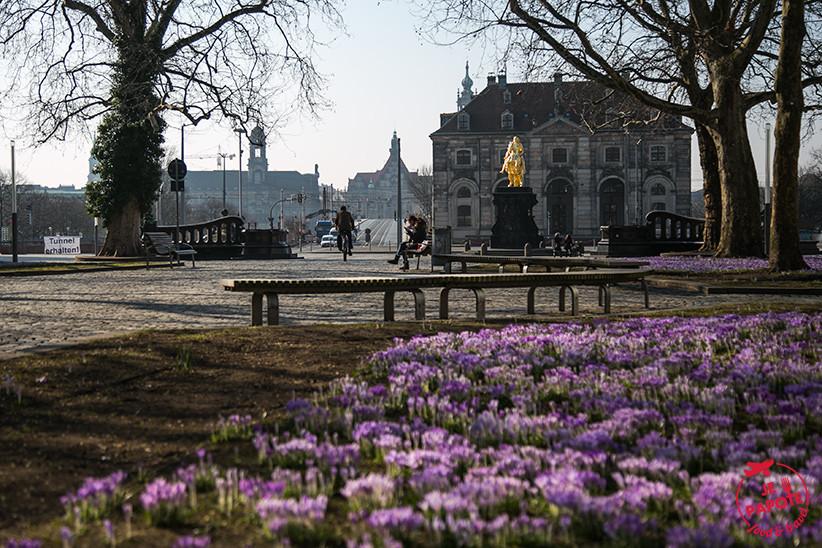 Mon city break à Dresde