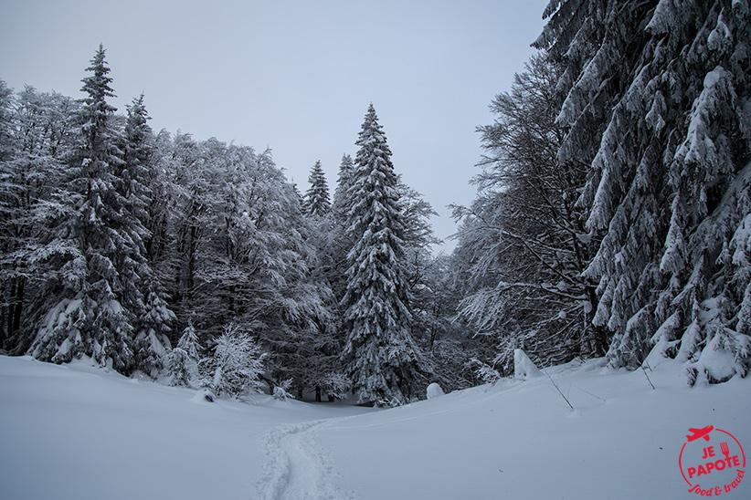 paysage-neige-jura