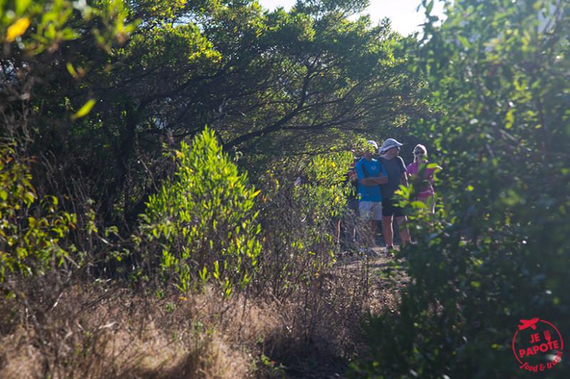 chemin-le-morne-maurice