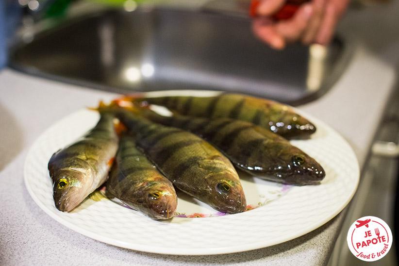 cuisine laponie poisson