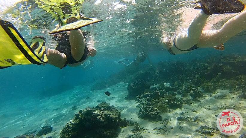 photo-sous-eau-ile-maurice