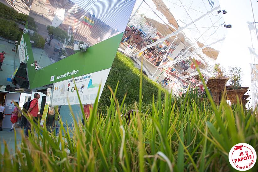 Pavillon Basmati à l'Expo