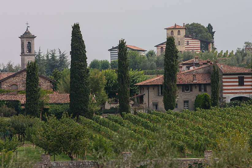 Vignoble Lombardie