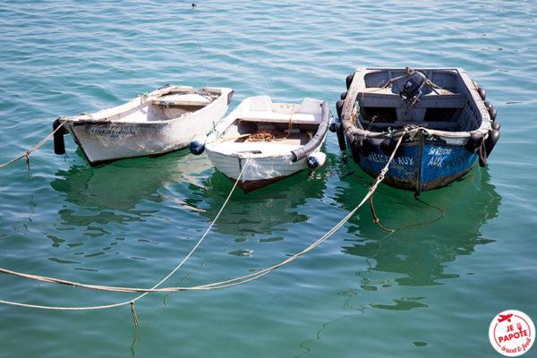 barques cascais