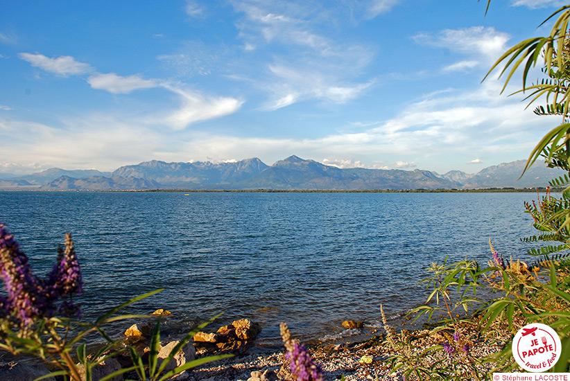 Lac de Shkodër Albanie