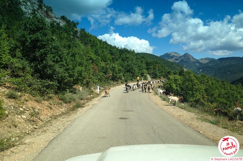 Sur la route SH 15, de Korçë à Gjirokastër
