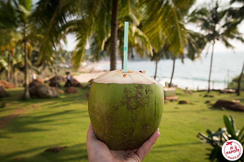 Noix de coco Kerala