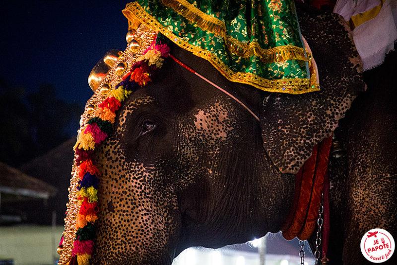 Fete religieuse Inde du sud