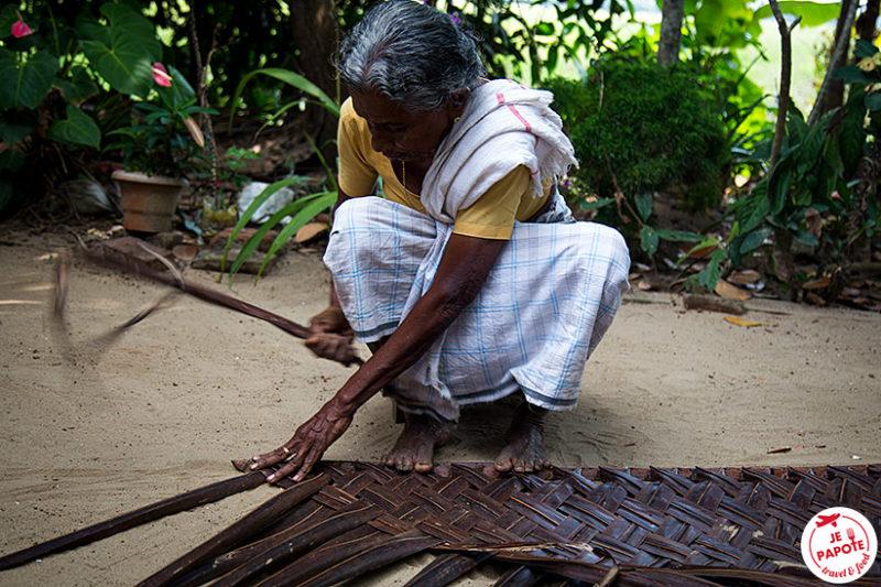 Visite village Kerala