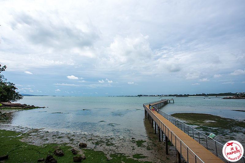 Ile Pulau Ubin