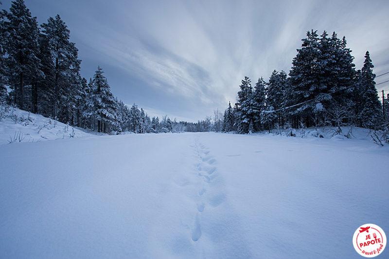 Laponie Suédoise Février