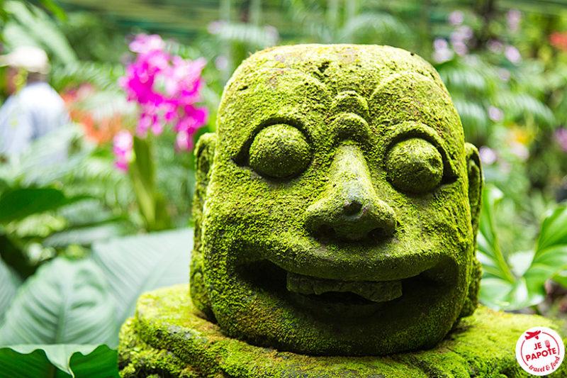 Visite Jardin Singapour