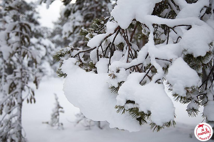 Neige novembre Laponie