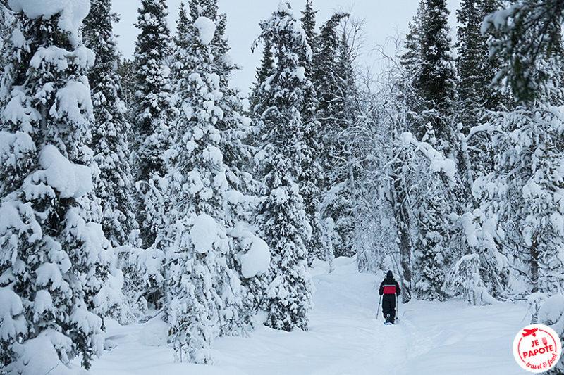 Balade en raquette Laponie