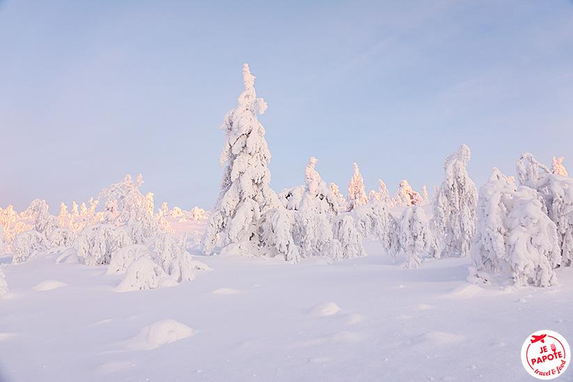 Levi Laponie finlandaise