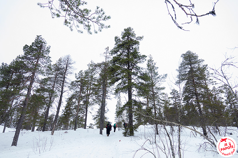 sortie aventures boreales