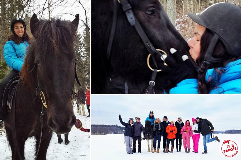 chevaux islandais finlande