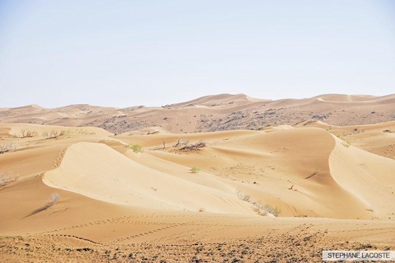 Désert de Maranjab