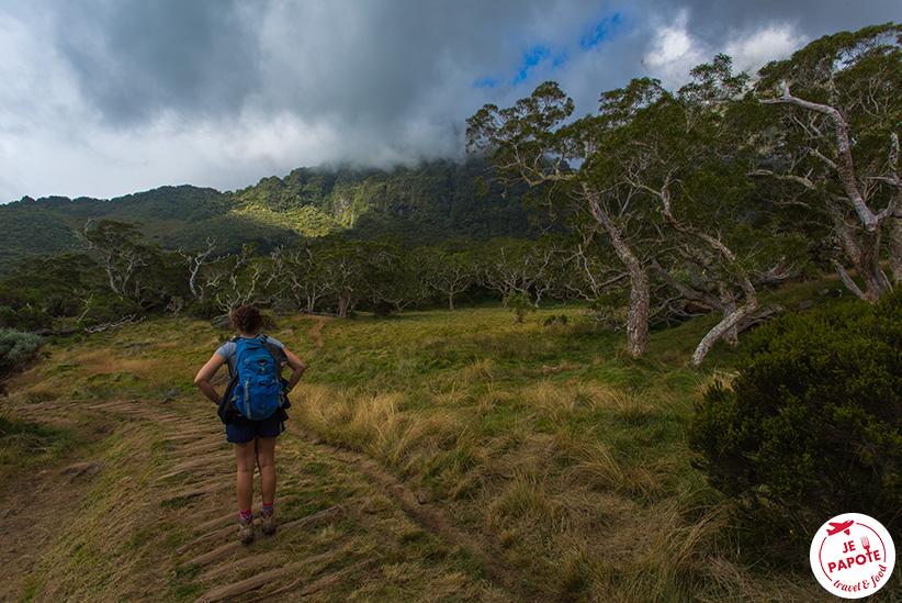 Randonnée La Réunion
