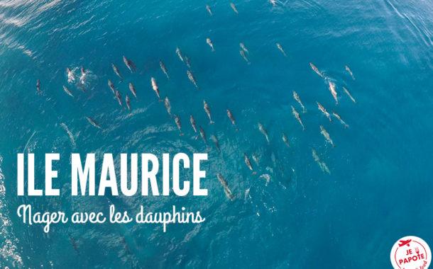 Réaliser un rêve : Nager avec les dauphins à l'Ile Maurice