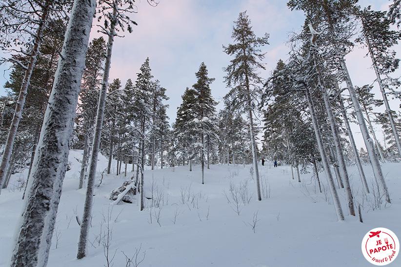 Nuit polaire Janvier Laponie