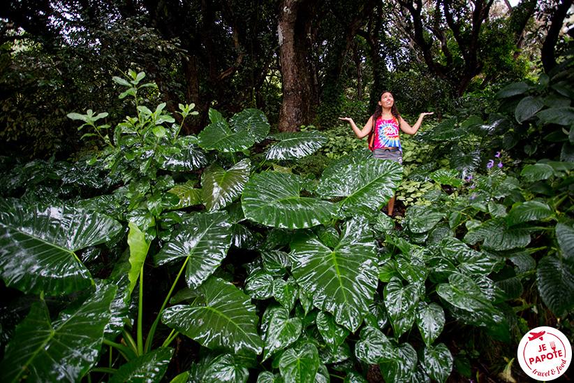 Pluie à Rodrigues