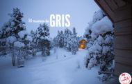 50 nuances de gris en Laponie