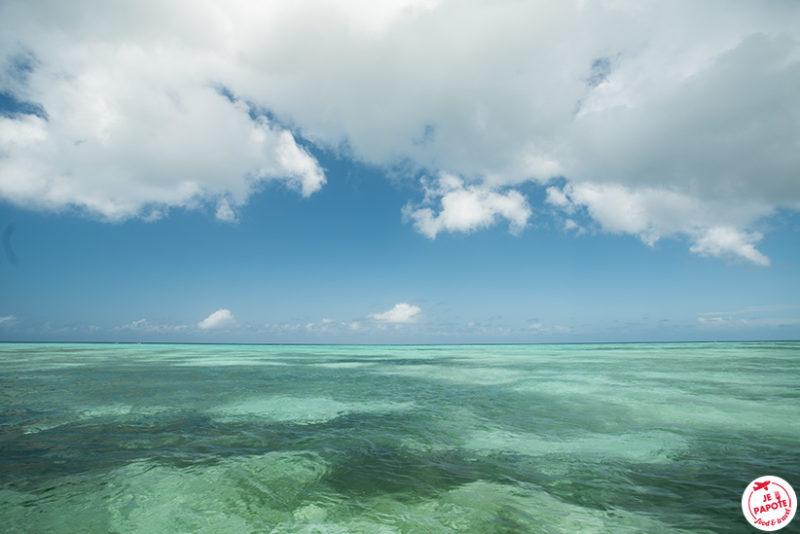 Mer Zanzibar