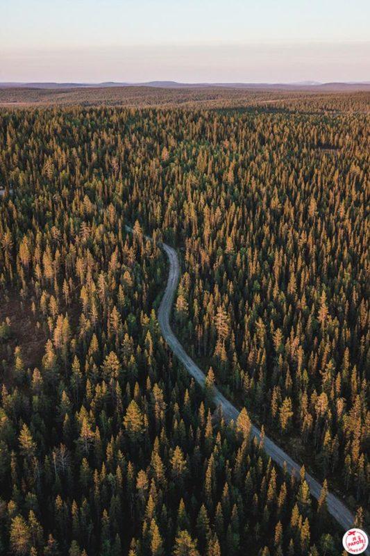 Laponie en juin