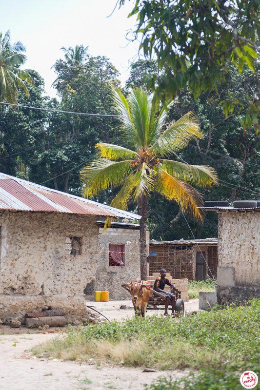 village zanzibar