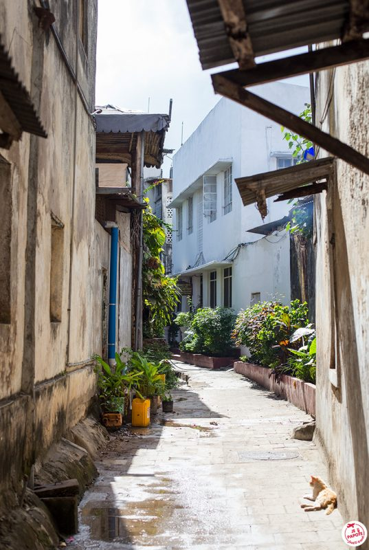 visiter stone town