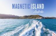 Visiter Magnetic Island en 1 journée