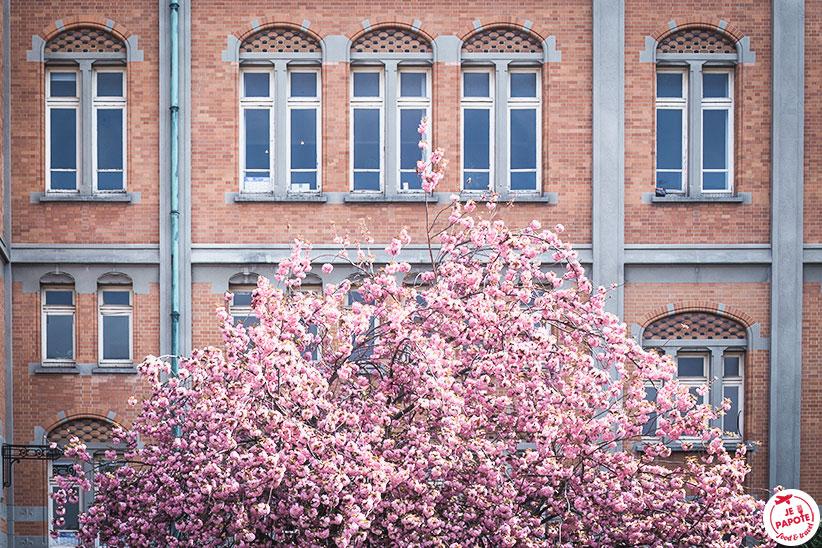 printemps lille