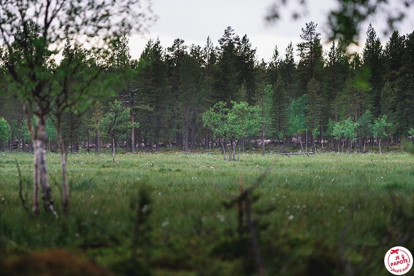 rennes dans la nature