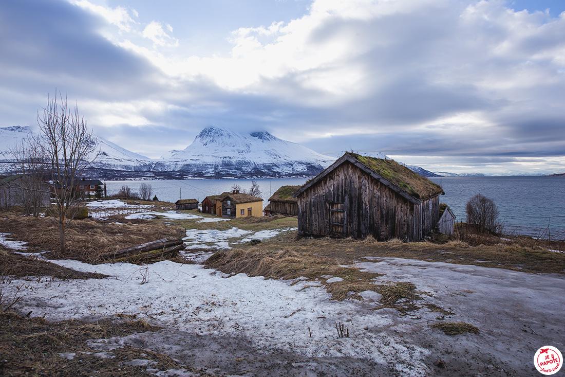Ile arctique autour de Tromso