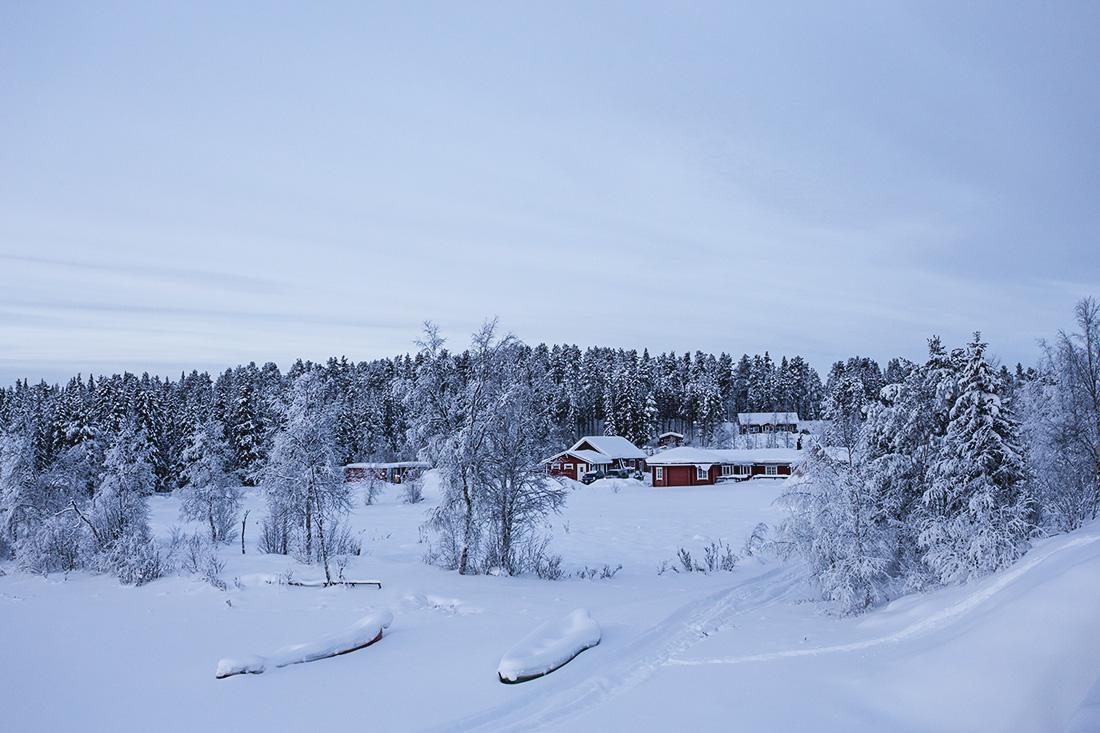 paysage laponie suédoise