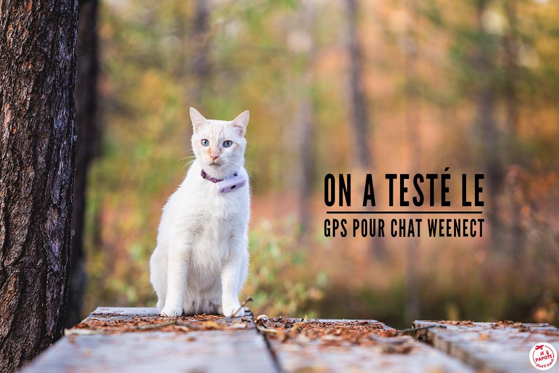 On a testé : le GPS pour chat Weenect